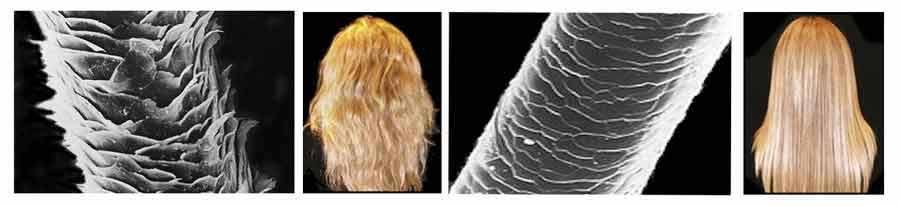 como-alisar-el-pelo-cuticula-sana-y-abierta